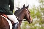 Horseman's Sunday, Noon, September 19 at Great Hampden